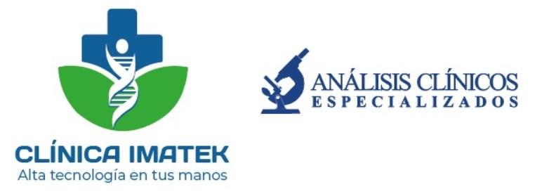 https://imatek-consulta.insadisa.mx